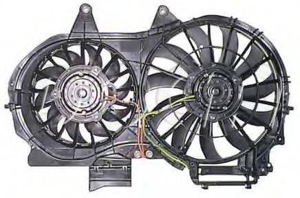 DOGA EAU029 Вентилятор, охлаждение двигателя